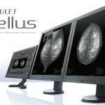 Amulet Bellus